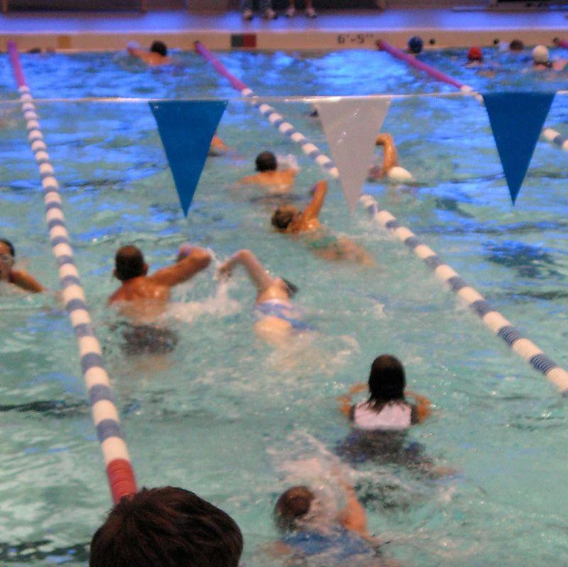Tri 8-10-08 swim2
