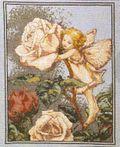 Rosefairychart