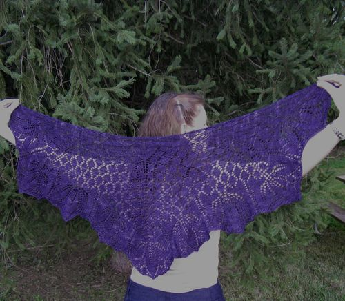 Orchid thief wingspan3