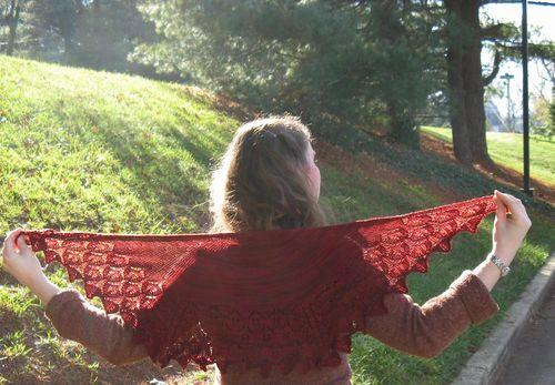Live oak wingspan