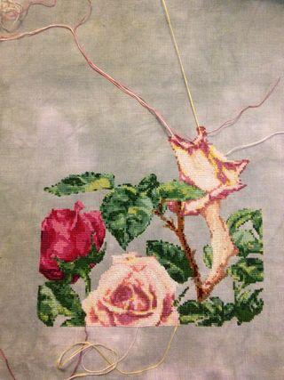 Rosefairywip5-7-12
