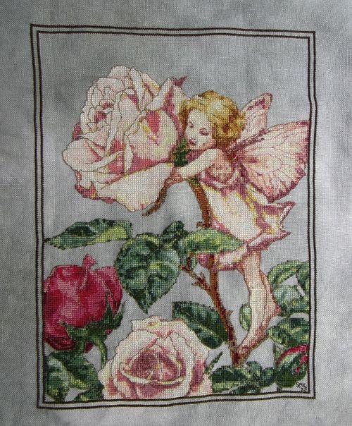 RoseFairyHD6-21-13