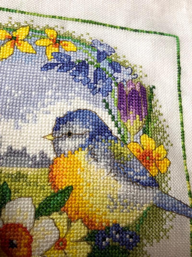 Bright&Beautiful HD- birddetail